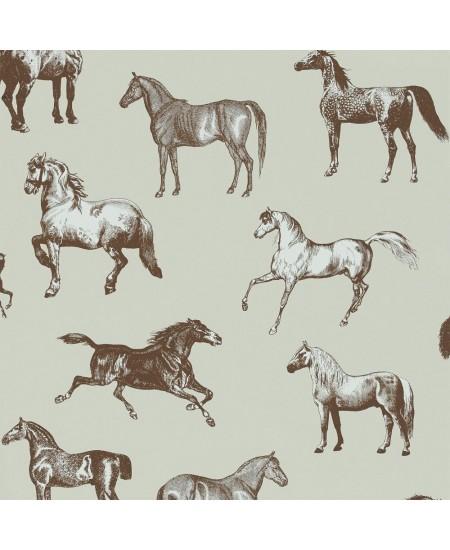 Arkliai RUDI